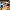 Mickey'nin doğum günü 18 Kasım'da kutlanacak